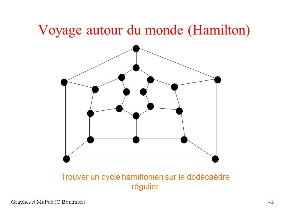 Voyage autour du monde (Hamilton)