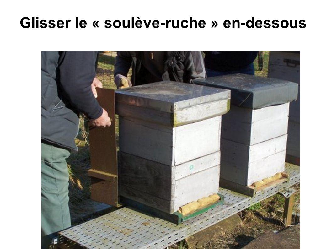 Glisser le « soulève-ruche » en-dessous