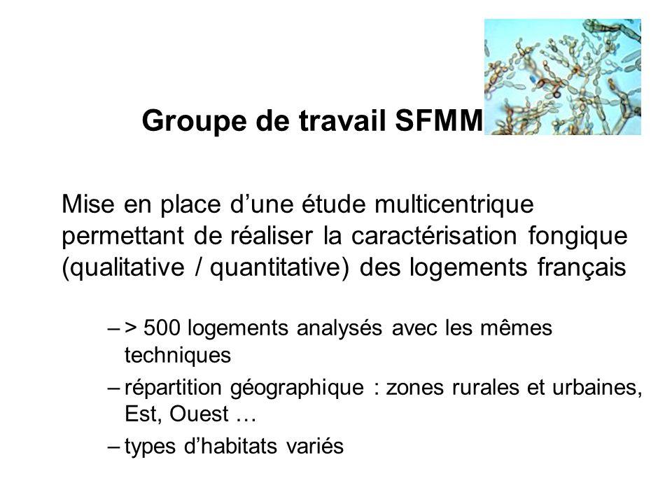 Groupe de travail SFMM