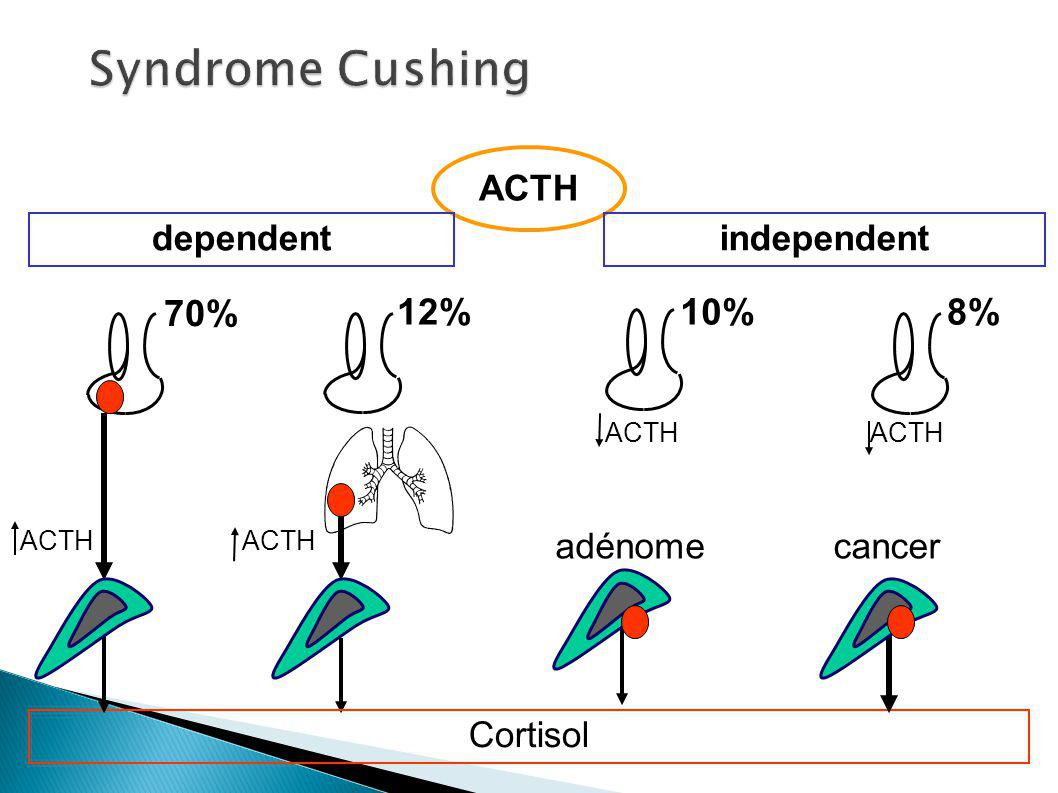 Syndrome Cushing 70% 12% 10% 8% ACTH dependent independent adénome