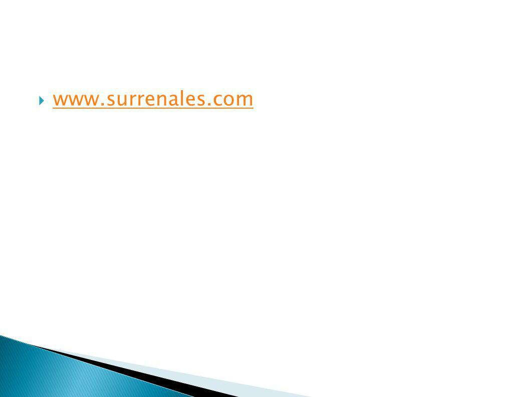 www.surrenales.com