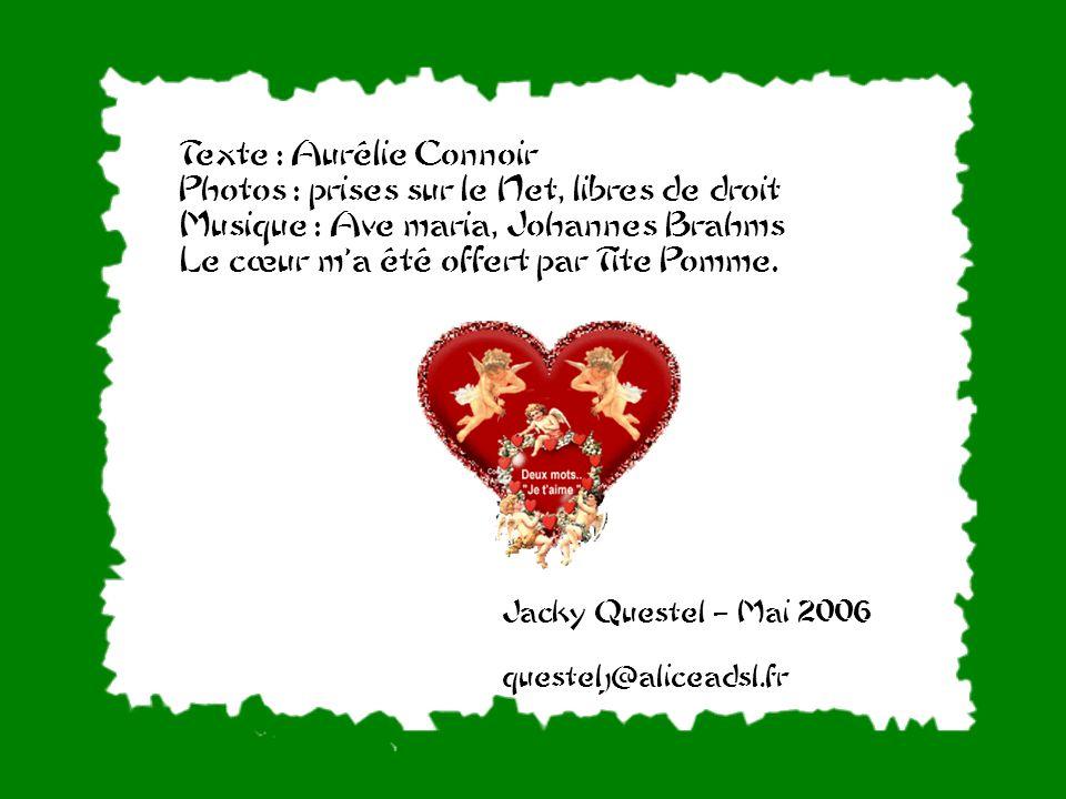 Texte : Aurélie Connoir Photos : prises sur le Net, libres de droit