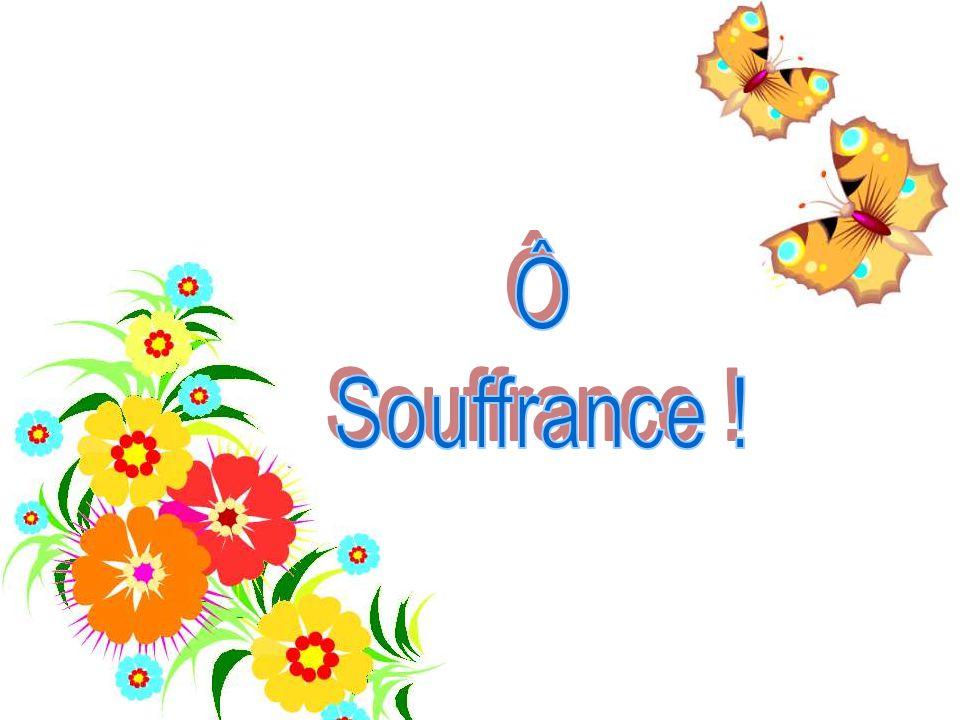 Ô Souffrance !