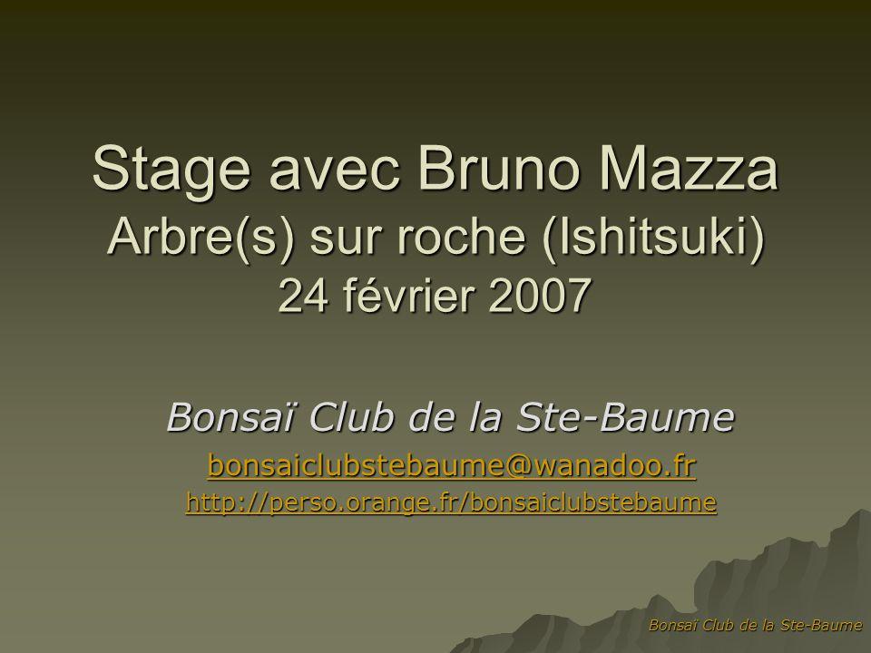 Stage avec Bruno Mazza Arbre(s) sur roche (Ishitsuki) 24 février 2007