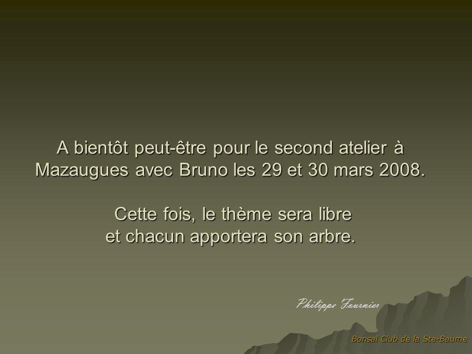 A bientôt peut-être pour le second atelier à Mazaugues avec Bruno les 29 et 30 mars 2008. Cette fois, le thème sera libre et chacun apportera son arbre. Philippe Fournier