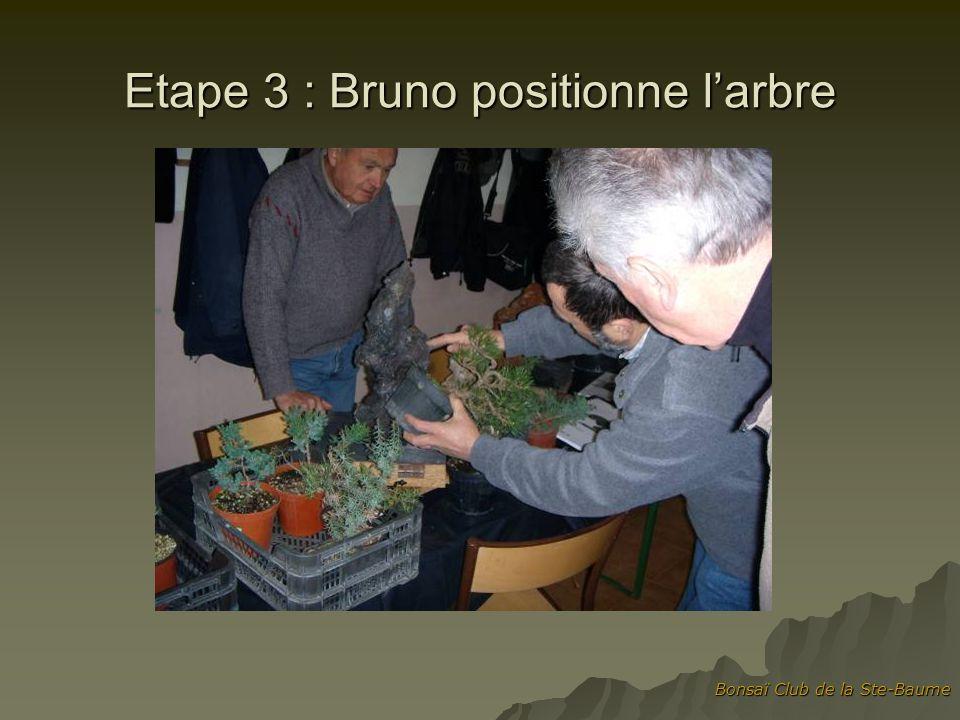Etape 3 : Bruno positionne l'arbre