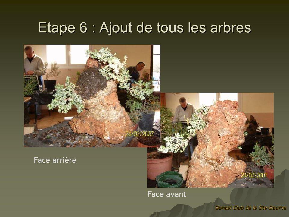 Etape 6 : Ajout de tous les arbres