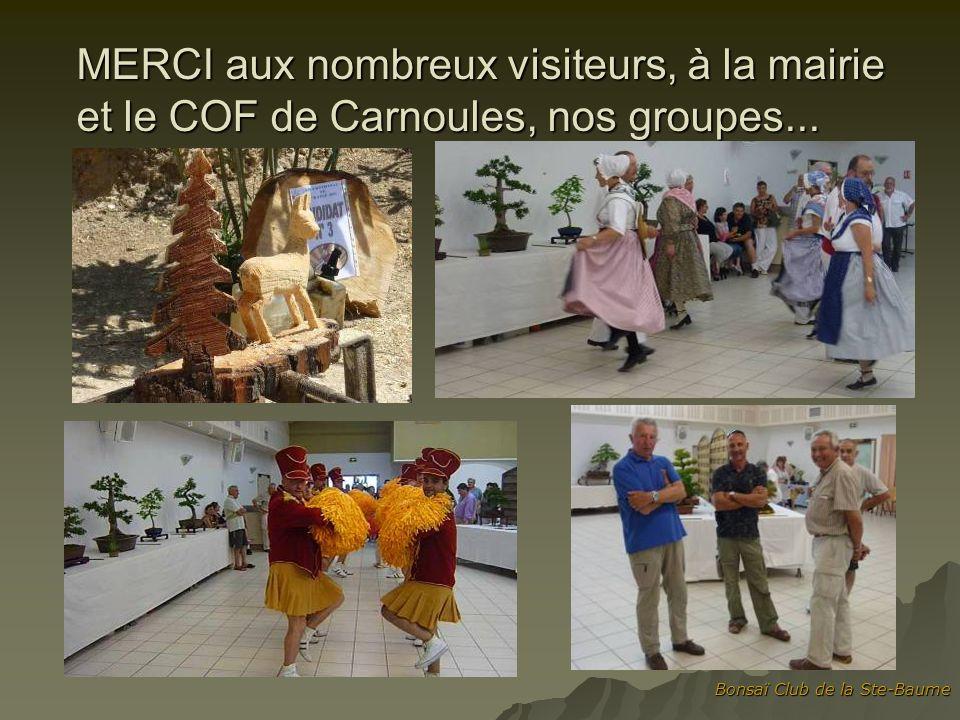 MERCI aux nombreux visiteurs, à la mairie et le COF de Carnoules, nos groupes...