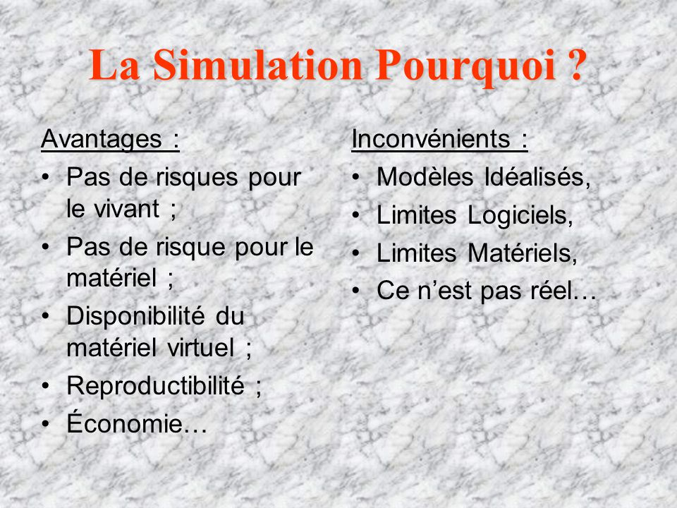 La Simulation Pourquoi