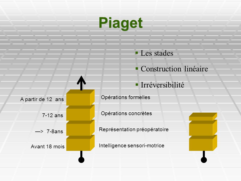 Piaget Les stades Construction linéaire Irréversibilité