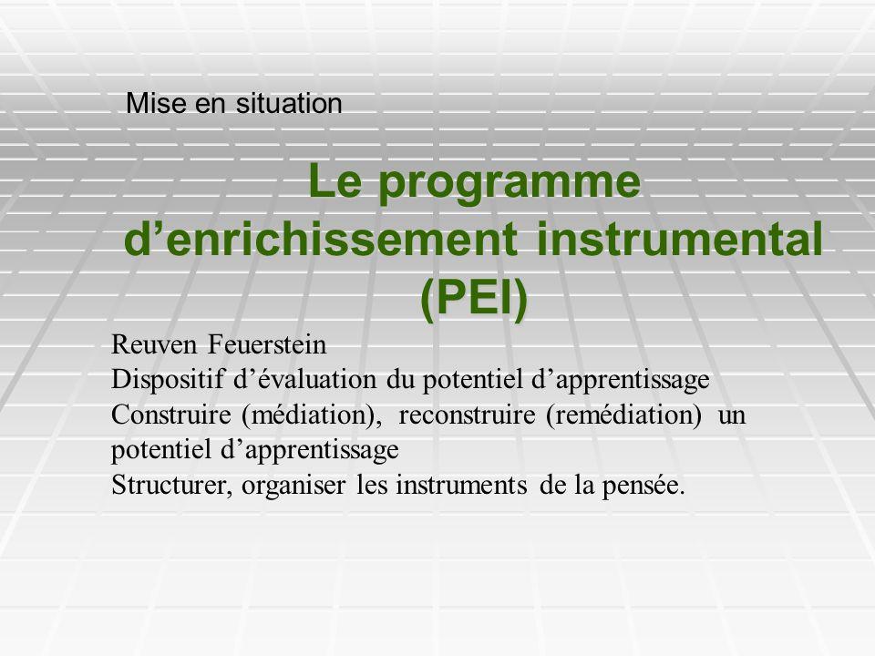 Le programme d'enrichissement instrumental (PEI)