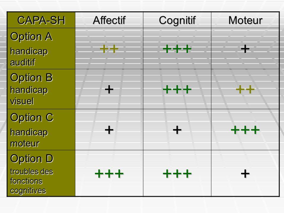 ++ +++ + CAPA-SH Affectif Cognitif Moteur Option A