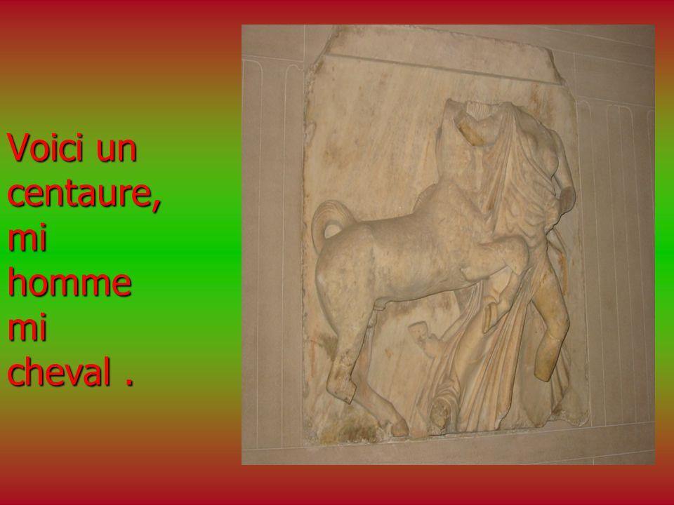Voici un centaure, mi homme mi cheval .