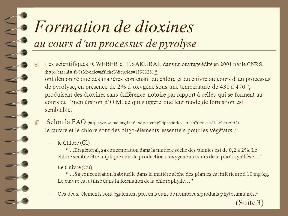 Formation de dioxines au cours d'un processus de pyrolyse