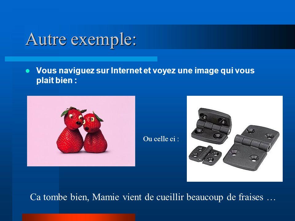 Autre exemple: Vous naviguez sur Internet et voyez une image qui vous plait bien : Ou celle ci :