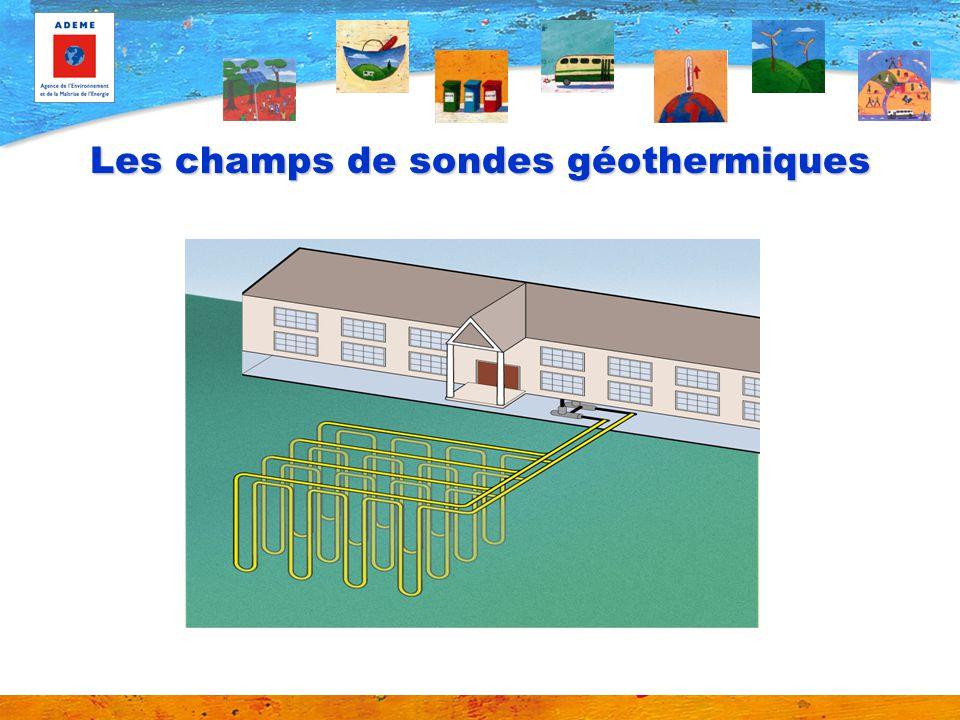 Les champs de sondes géothermiques