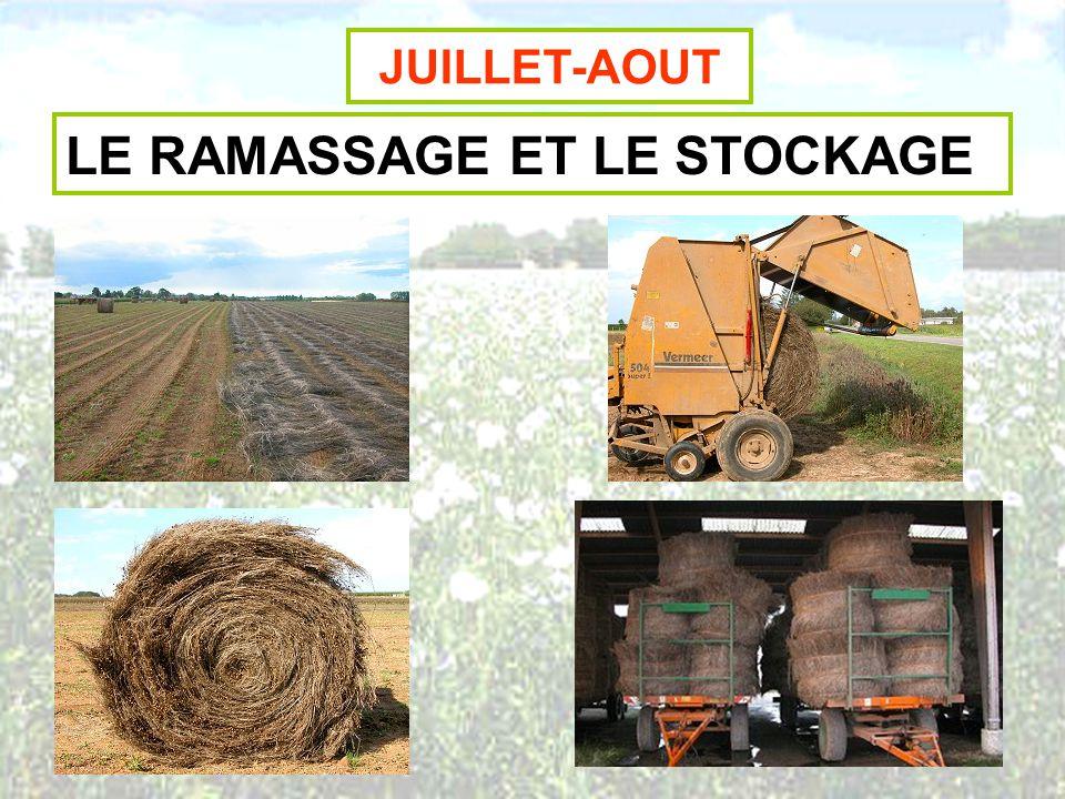 LE RAMASSAGE ET LE STOCKAGE