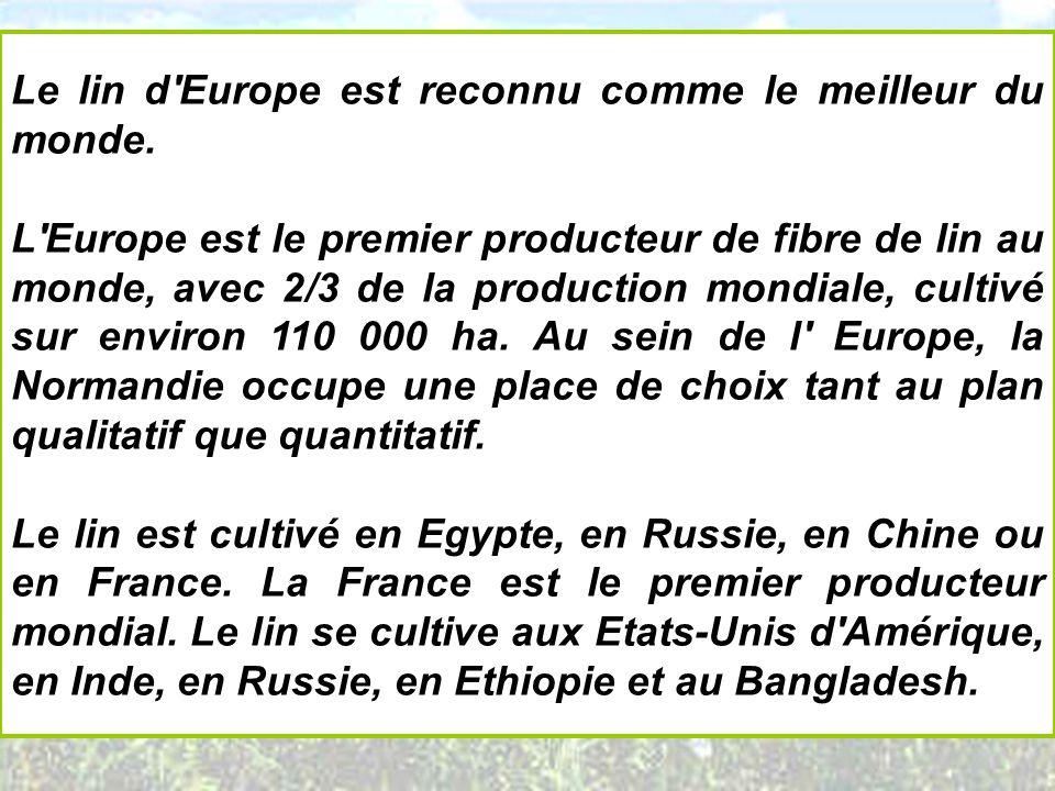 Le lin d Europe est reconnu comme le meilleur du monde.