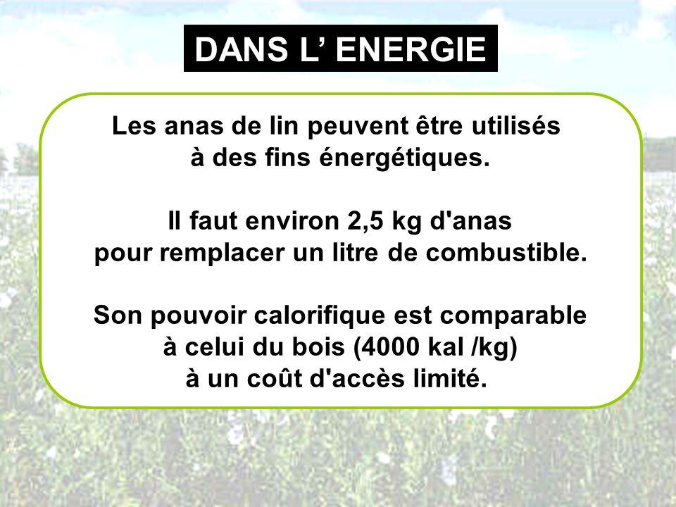 DANS L' ENERGIE Les anas de lin peuvent être utilisés