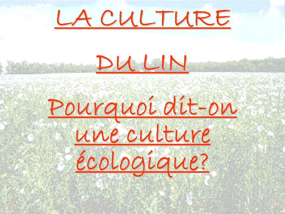 Pourquoi dit-on une culture écologique