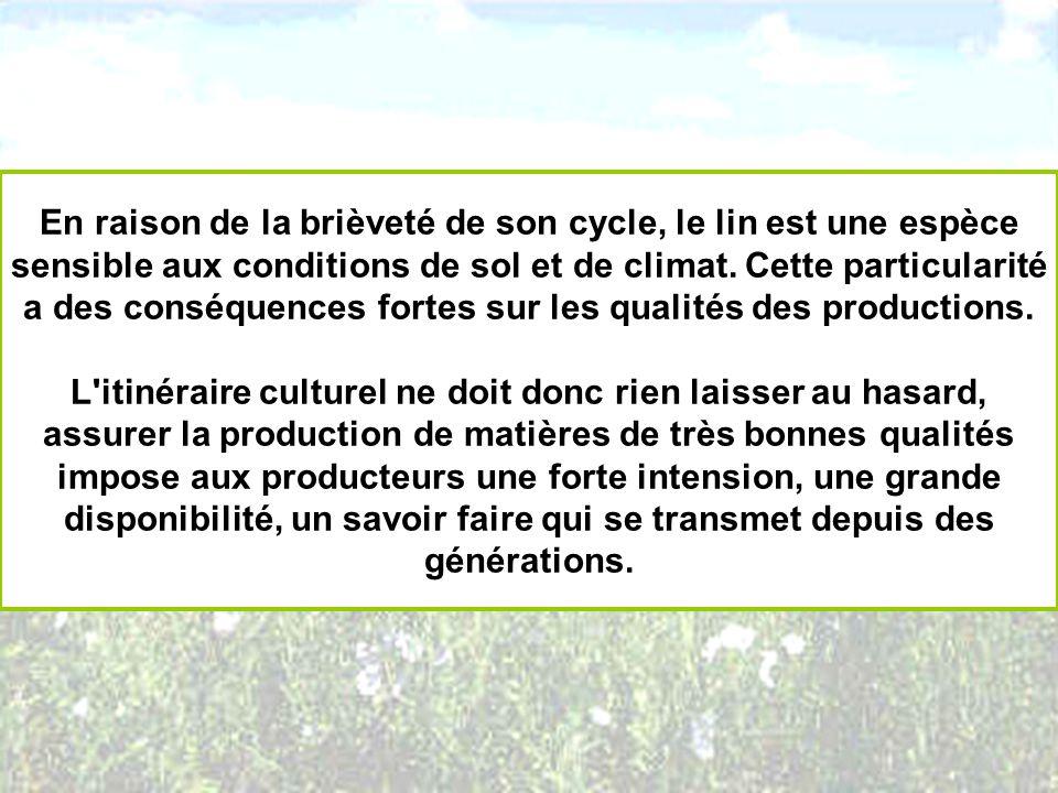 En raison de la brièveté de son cycle, le lin est une espèce sensible aux conditions de sol et de climat. Cette particularité a des conséquences fortes sur les qualités des productions.