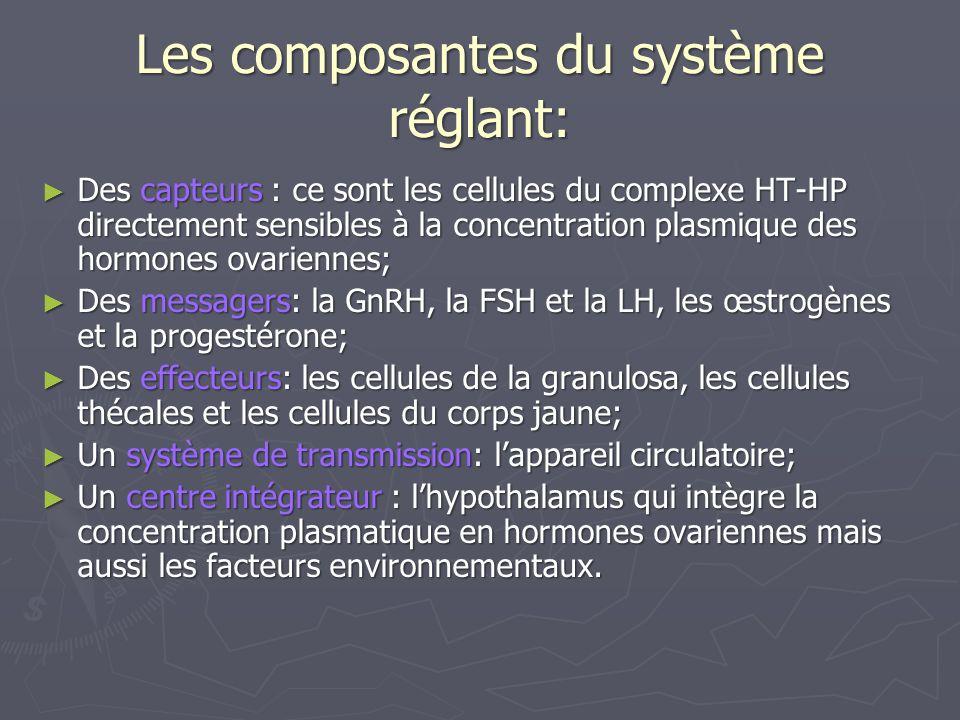 Les composantes du système réglant: