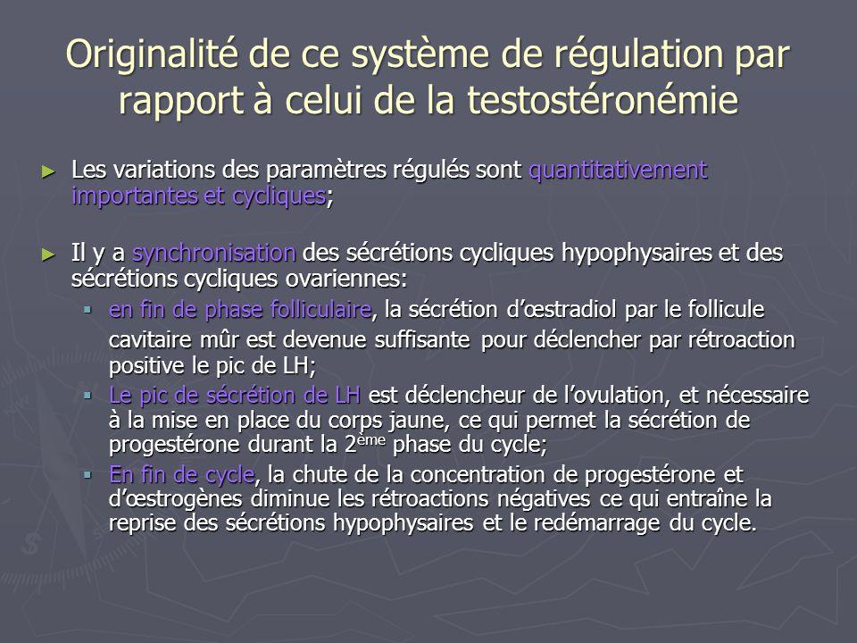 Originalité de ce système de régulation par rapport à celui de la testostéronémie