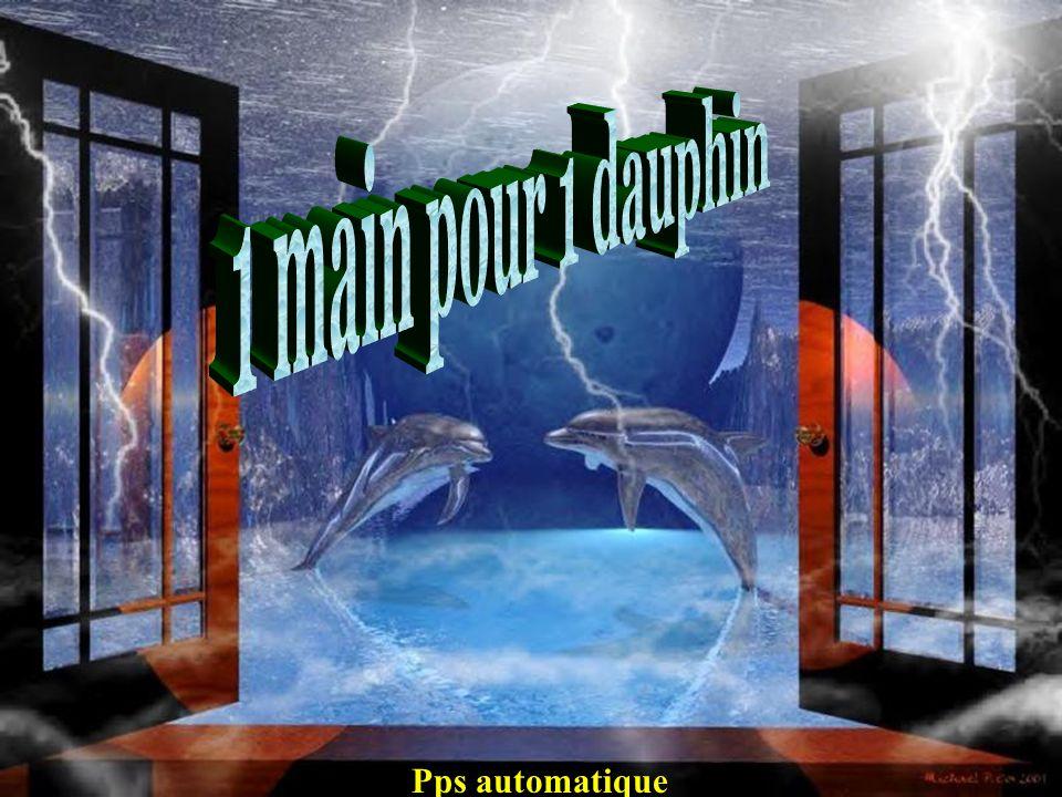 1 main pour 1 dauphin Pps automatique