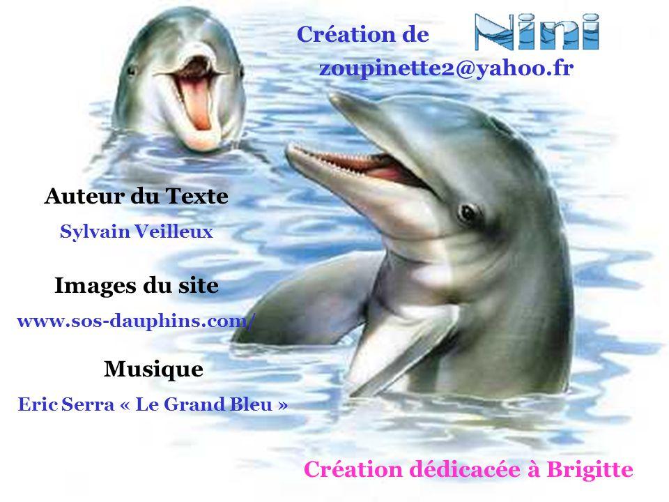 Eric Serra « Le Grand Bleu » Création dédicacée à Brigitte