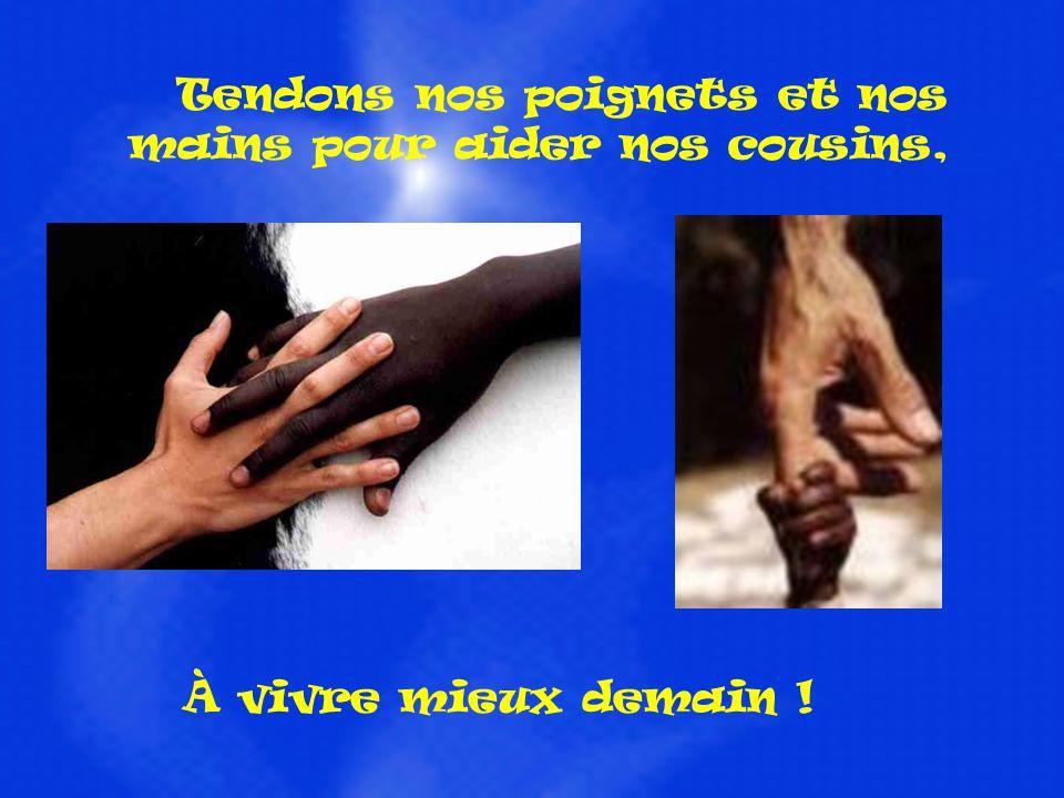 Tendons nos poignets et nos mains pour aider nos cousins,