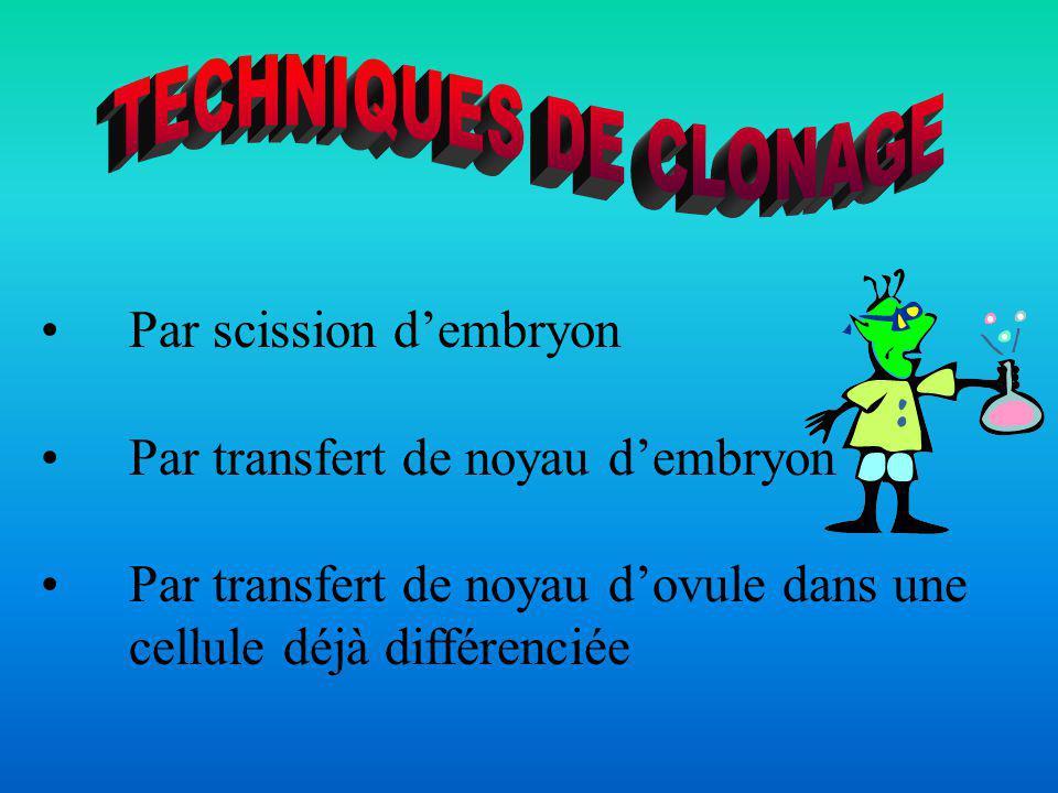 TECHNIQUES DE CLONAGE Par scission d'embryon. Par transfert de noyau d'embryon.