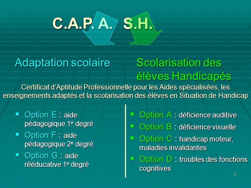 A. S.H. C.A.P. Scolarisation des élèves Handicapés Adaptation scolaire