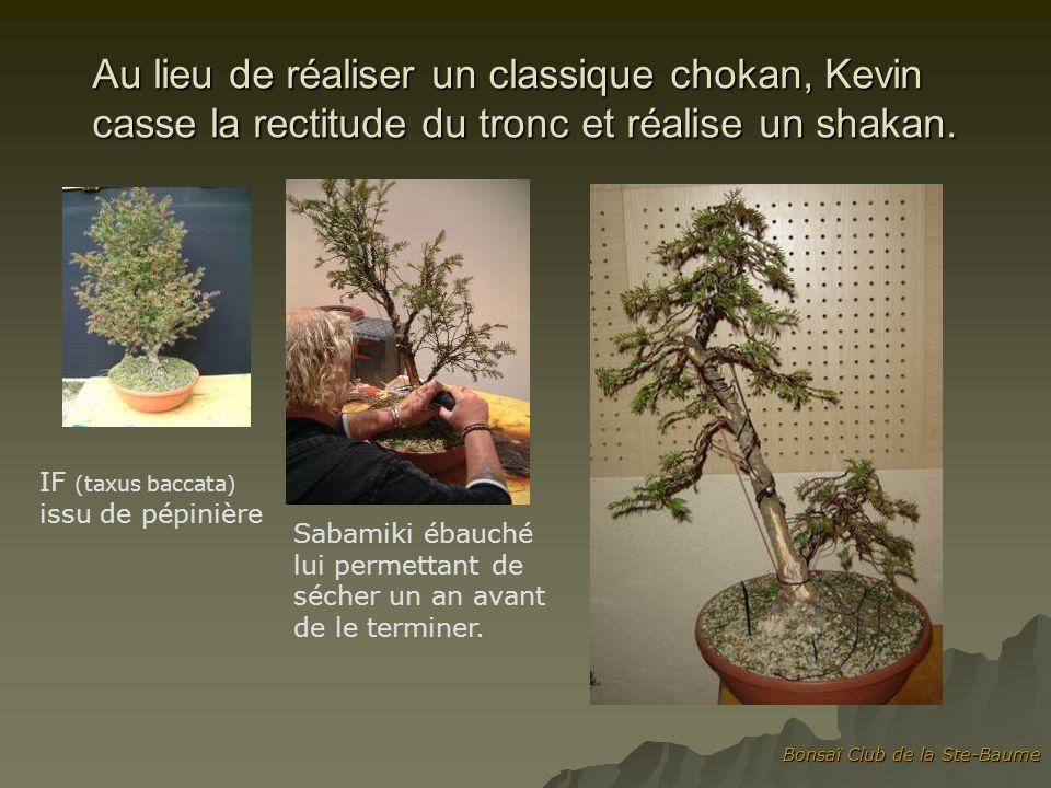 Au lieu de réaliser un classique chokan, Kevin casse la rectitude du tronc et réalise un shakan.