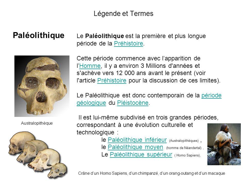 Paléolithique Légende et Termes
