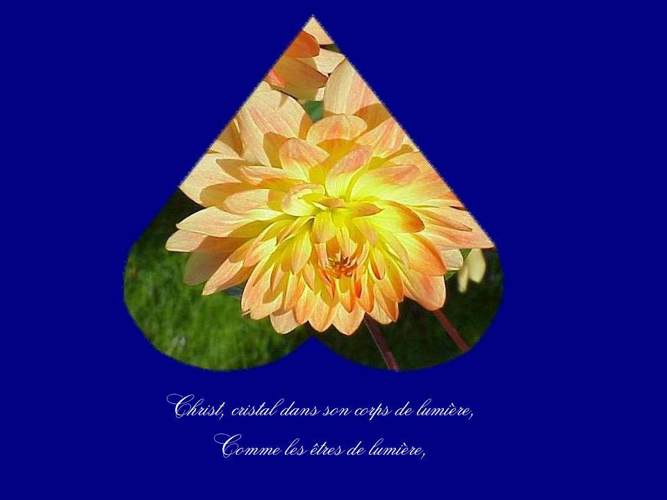 Christ, cristal dans son corps de lumière, Comme les êtres de lumière,
