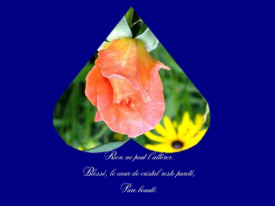 Blessé, le cœur de cristal reste pureté,