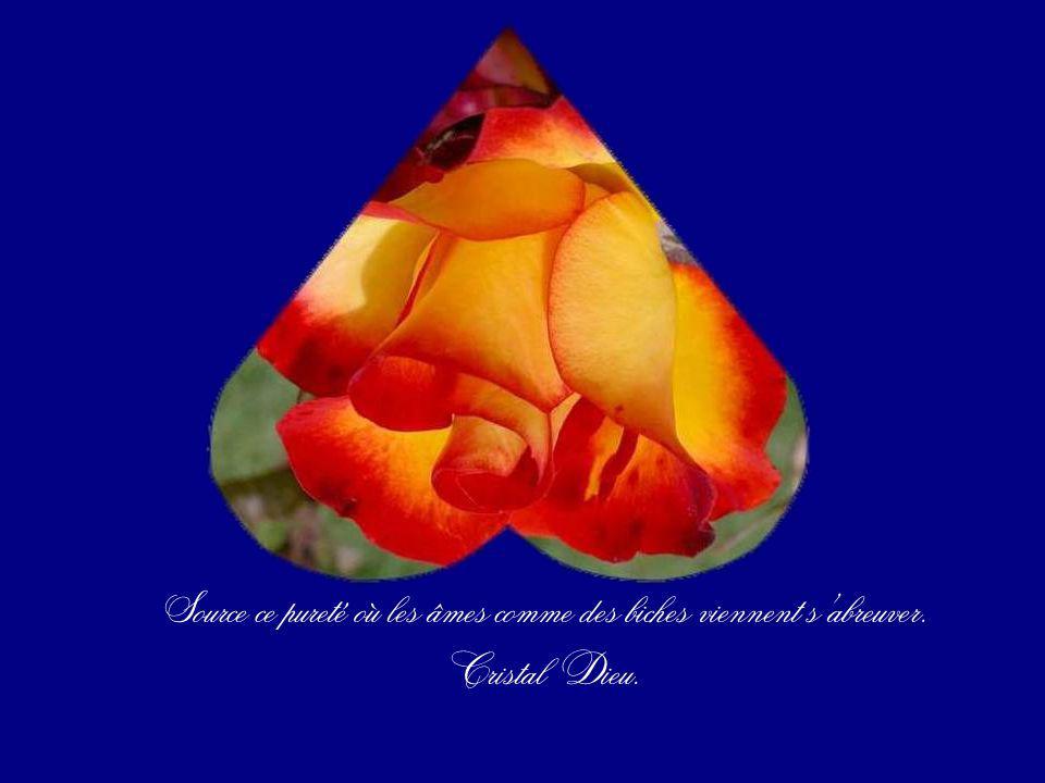 Source ce pureté où les âmes comme des biches viennent s'abreuver.