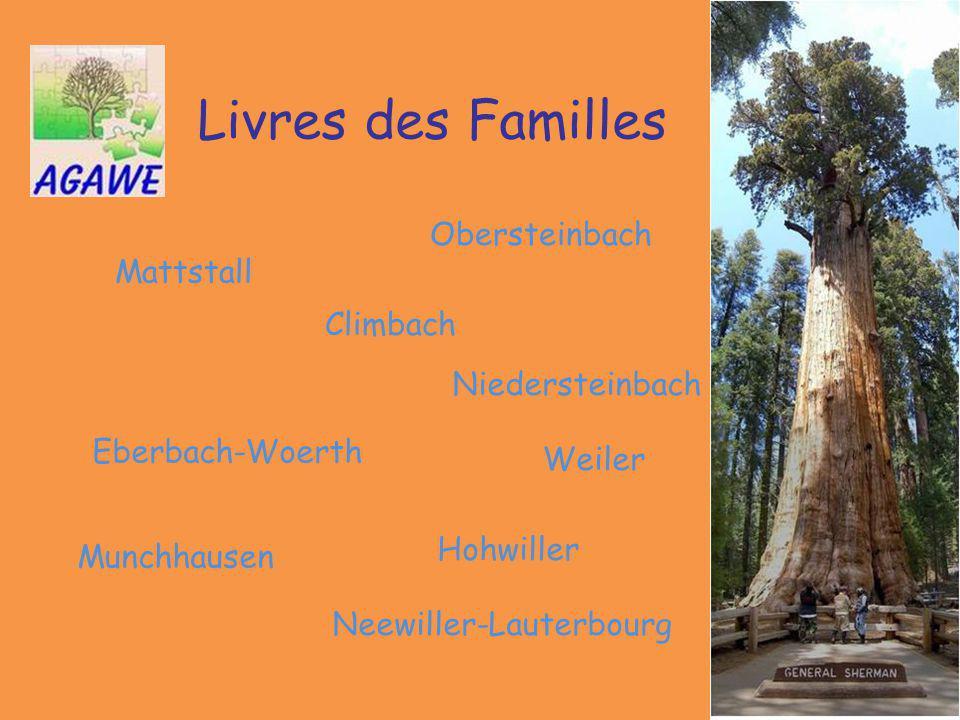 Livres des Familles Obersteinbach Mattstall Climbach Niedersteinbach