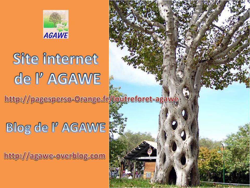 Site internet de l' AGAWE