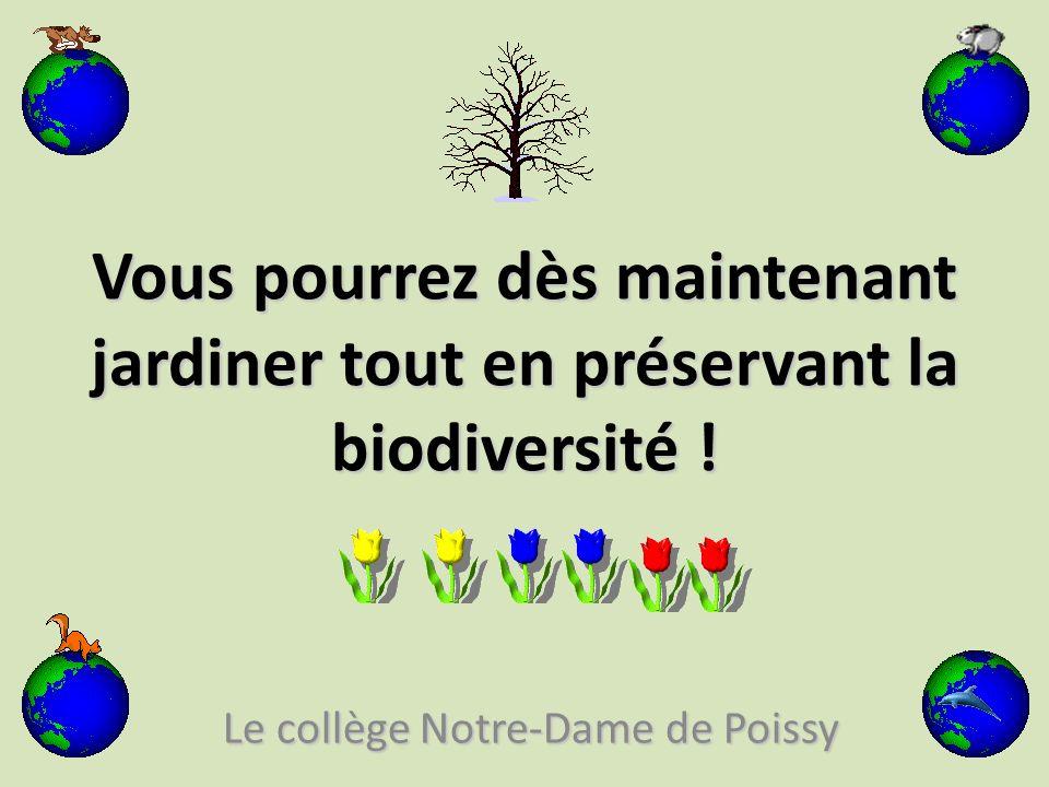 Le collège Notre-Dame de Poissy