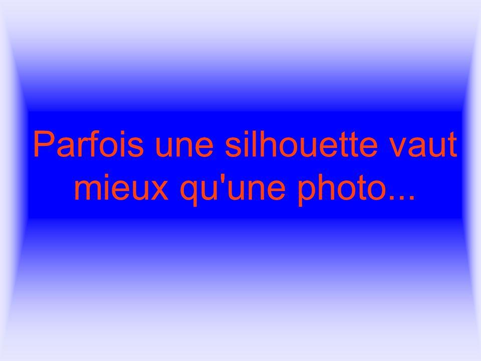 Parfois une silhouette vaut mieux qu une photo...