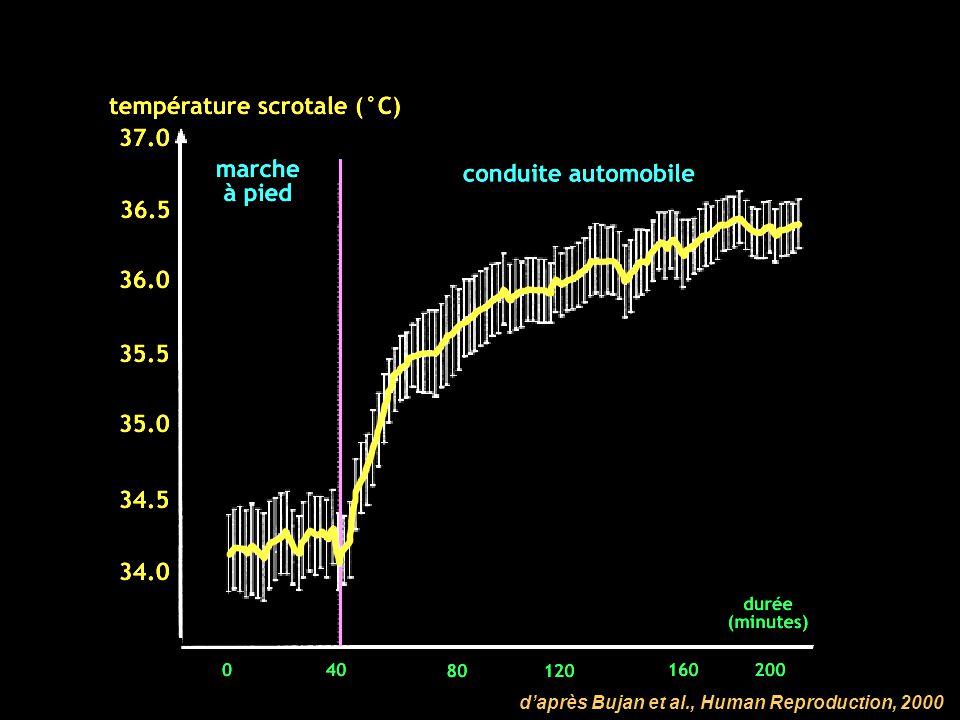 d'après Bujan et al., Human Reproduction, 2000