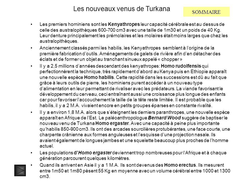 Les nouveaux venus de Turkana