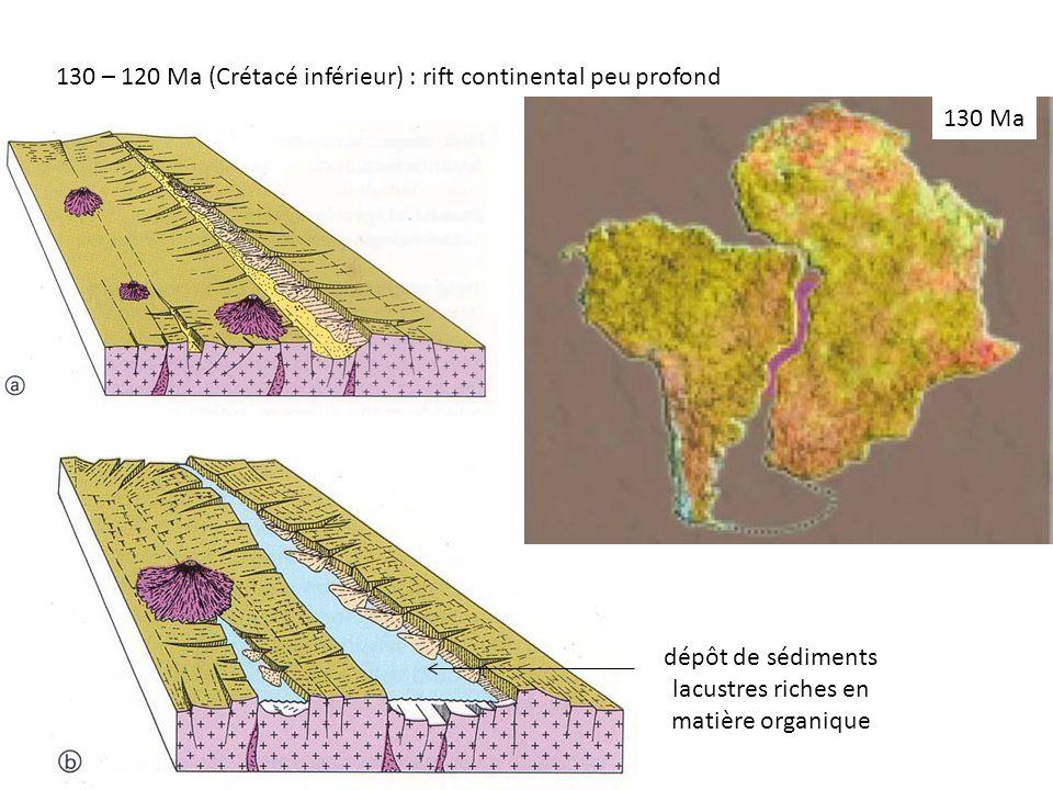 dépôt de sédiments lacustres riches en matière organique