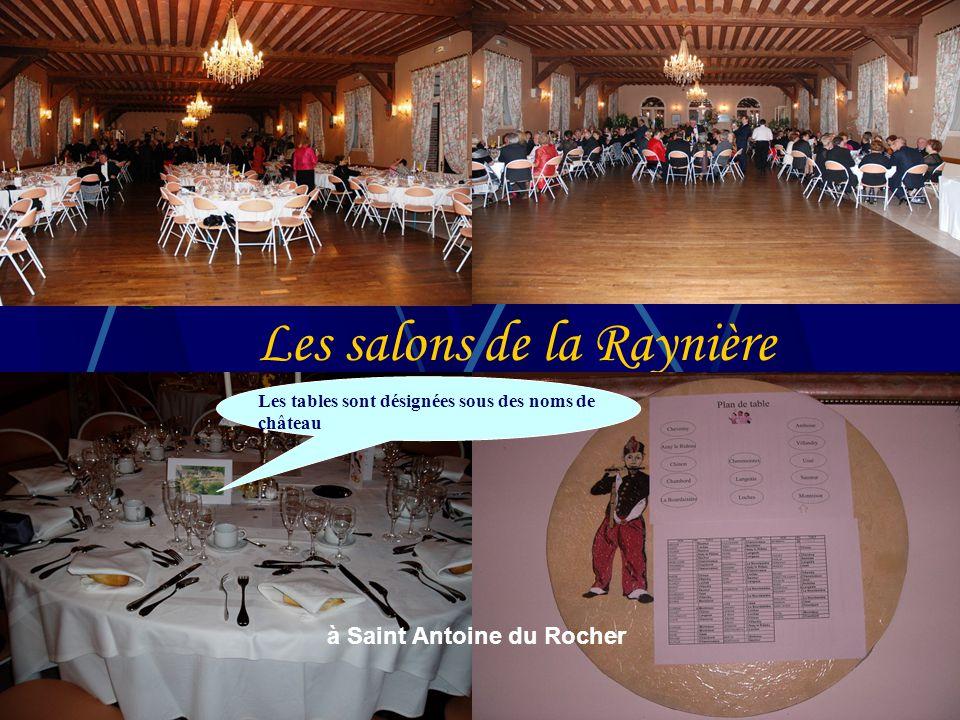 Les salons de la Raynière