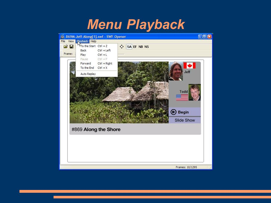 Menu Playback