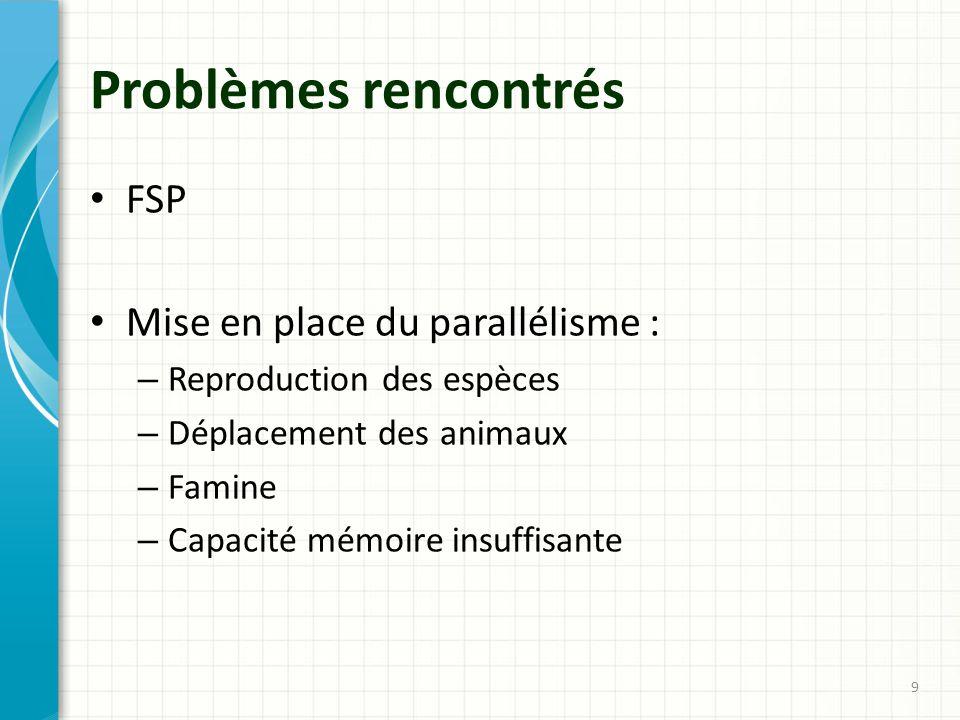 Problèmes rencontrés FSP Mise en place du parallélisme :