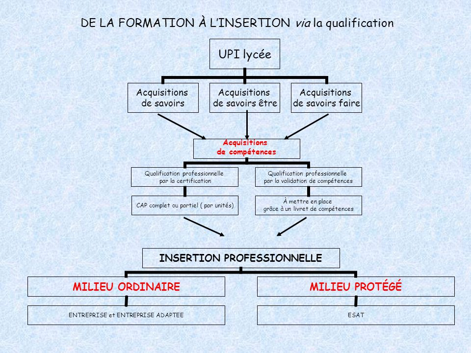DE LA FORMATION À L'INSERTION via la qualification