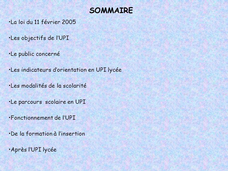 SOMMAIRE La loi du 11 février 2005 Les objectifs de l'UPI