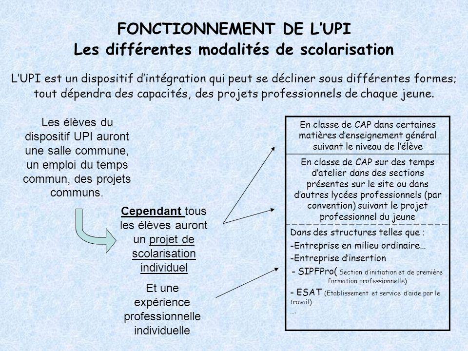 FONCTIONNEMENT DE L'UPI Les différentes modalités de scolarisation